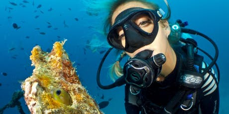 Learn to Scuba Dive (Class) tickets