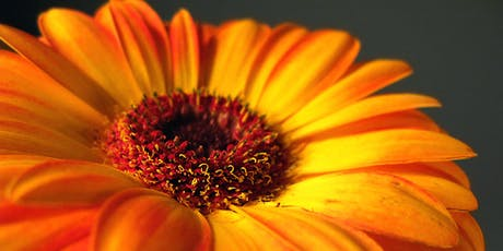 An Autumn Bouquet Floral Workshop tickets