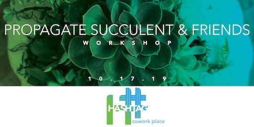 Propagate Succulents and Friends Workshop