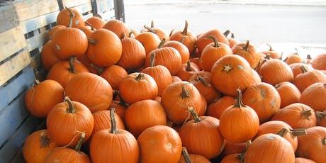 Fall Fest Pumpkin Painting tickets