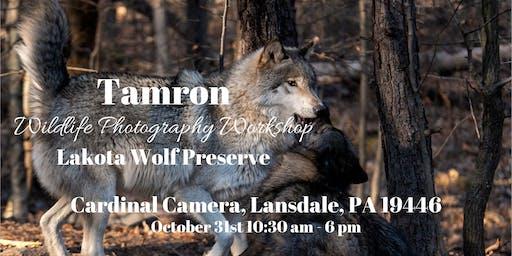 Tamron Wildlife Photography Workshop at The Lakota Wolf Preserve