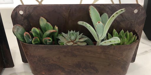 Succulent Planter Workshop