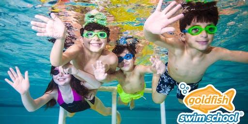 Sunday Afternoon Family Swim 10/27/19 - Goldfish Brookfield