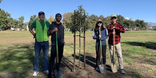 Green Crew Tree Planting in Pomona!