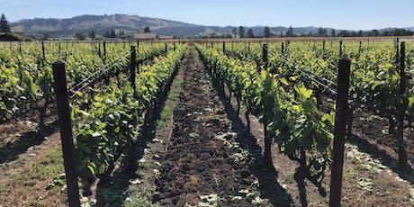 Wine Night: Napa Valley, CA tickets
