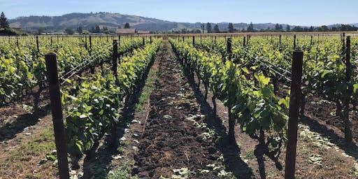 Wine Night: Napa Valley, CA