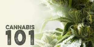 CannaClass: Cannabis 101