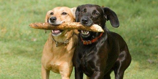 West-End Dog Meet-up!