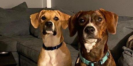 Dog Star Alum Reunion tickets
