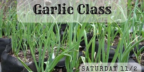 Grow Your Own Garlic Workshop tickets