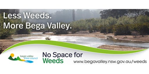 No Space for Weeds