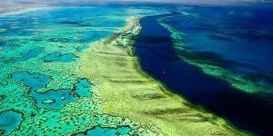 Great Barrier Reef - What is really happening?