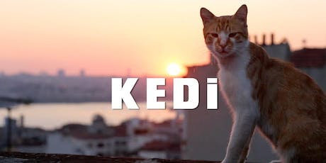 """Movie """"Kedi: The Cats of an Ancient City"""" @Girrawheen Library tickets"""