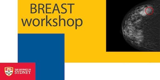 BREAST workshop in Hanoi (Individual Reading sessions - Phiên thực hành đọc nhũ ảnh)