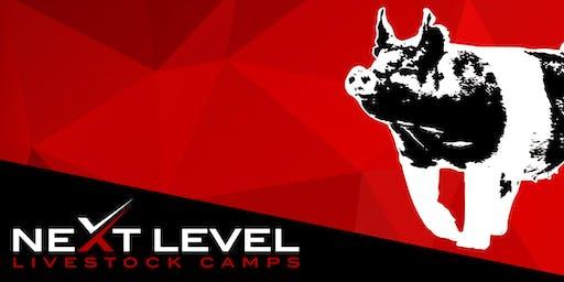 NEXT LEVEL SHOW PIG CAMP   January 25th/26th, 2020   Buckeye, Arizona