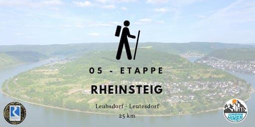 Sportliche Herbstwanderung auf dem Rheinsteig - 25 km