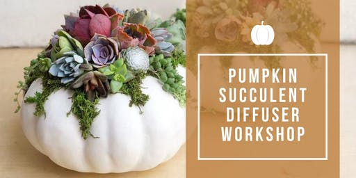 Pumpkin Succulent Diffuser Workshop at RBB!