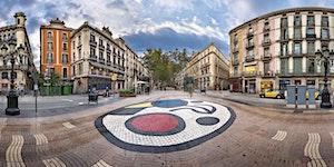 Palestra didattica Barcellona