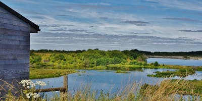 Adult Pond dipping workshop for beginners at College Lake
