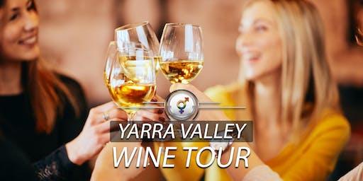 Platinum Lesbian Wine Tour | January