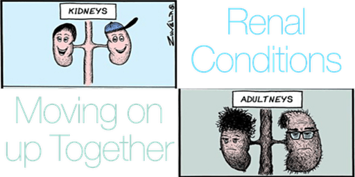 Renal Conditions: Moving on up Together 2020
