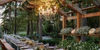 Dinner in the Garden 2