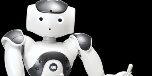 Social Robots as Motivational Interviewers: demonstration and discussion