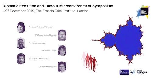 Somatic Evolution and Tumour Microenvironment Symposium