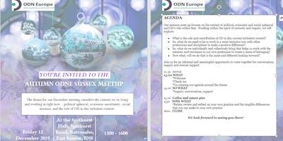 OD Network Europe (ODNE) Sussex Autumn Meetup