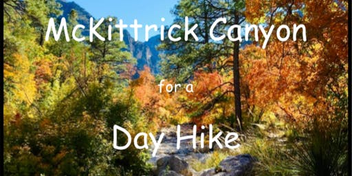 Family Day Trip to McKittrick Canyon