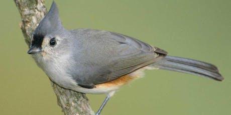Elmwood Cemetery Bird Walk tickets