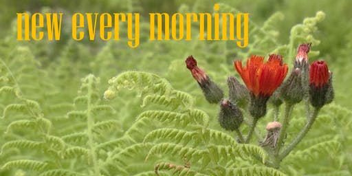 New Every Morning - Fresh Choral Classics