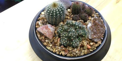 Succulents & Cacti Terrarium Building Workshop