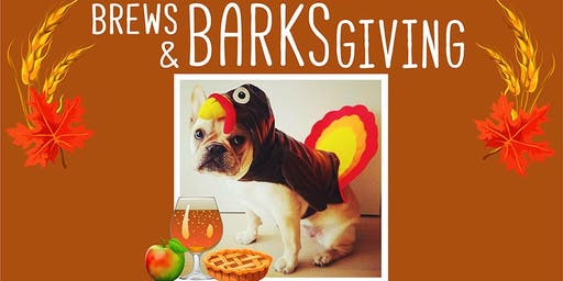 BarkHappy Boston: Brews & BARKSgiving Benefiting Missing Dogs MA
