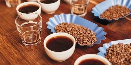 Coffee Tasting Experience with Dark Woods