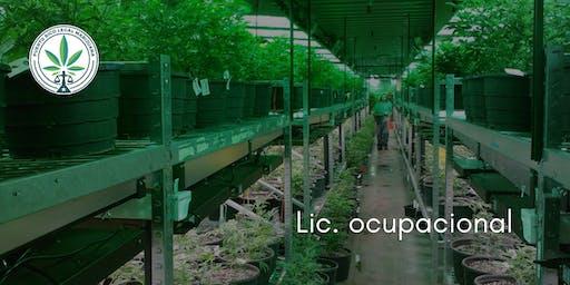 Curso Licencia Ocupacional (Ponce)