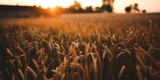 Harvest Luncheon: Planning for the Future of Your Farm