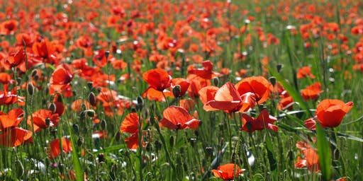 An Evening of Entertainment for the Royal British Legion 2019 Poppy Appeal
