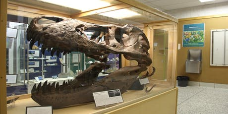 National Fossil Day:  Tour the Collection tickets