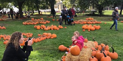 Pumpkin Point Preview for Governors Island members