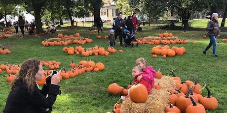 Pumpkin Point Preview for Governors Island members tickets