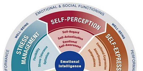 Emotional Intelligence Certification in Houston, Texas EQ-i 2.0 and EQ360 tickets