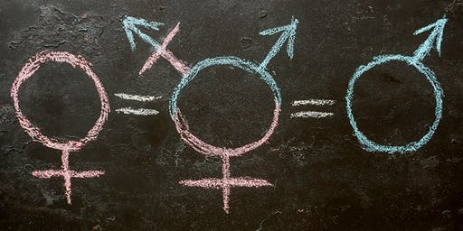 Gender Identity & Our Public Schools: Separating Fact from Fiction