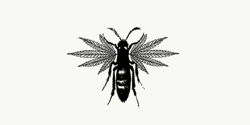 Pretoria Fields Collective Hemp Farming Symposium with Q & A
