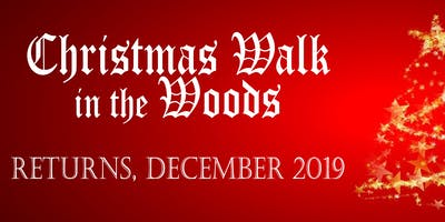 Christmas Walk in the Woods