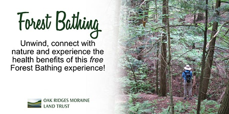 Seniors Forest Bathing tickets