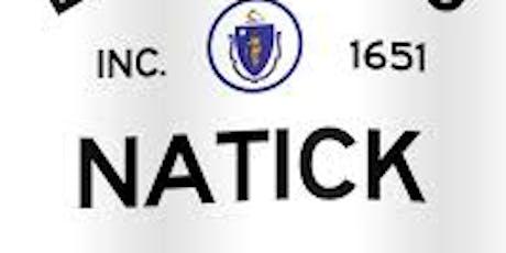 Natick High School Class of 1999 Reunion tickets