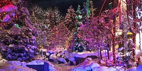 BIEMR - Winter Wonderland tickets