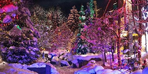 BIEMR - Winter Wonderland