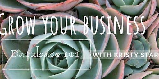 Grow your Business Redmond: Database 101
